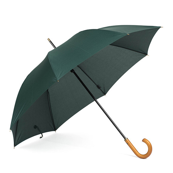 WB UMBRELLA (green)